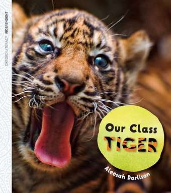 Our Class Tiger